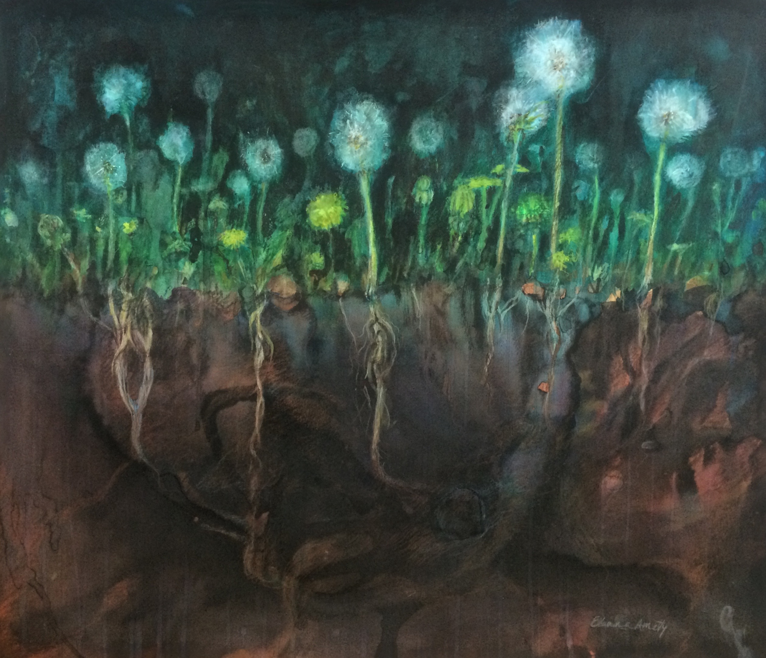 Dandelions with Roots
